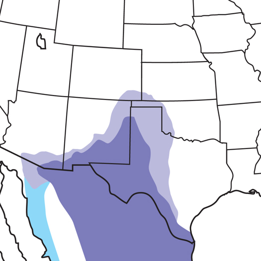 Chihuahuan-Raven_map