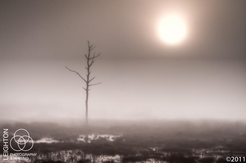 Foggy Dawn and the Burning Sun