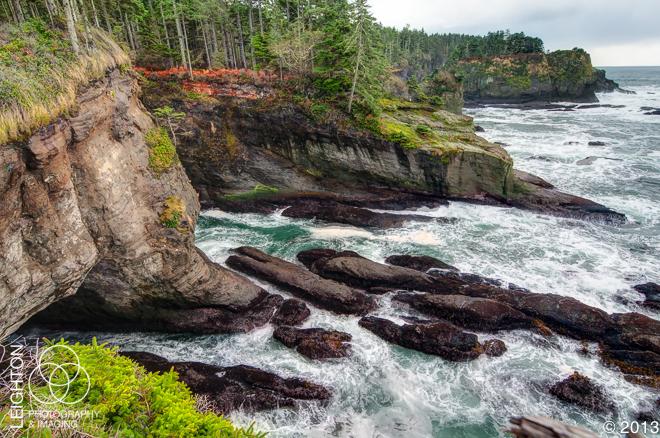 Washington's Rocky Coast